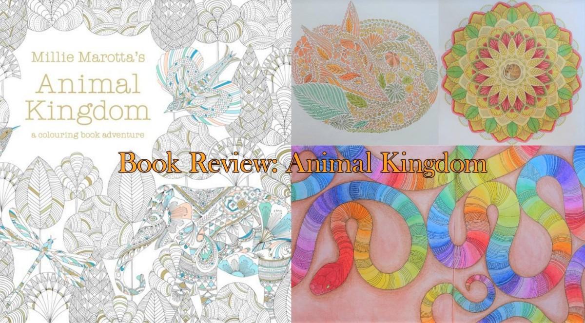 Book Review Animal Kingdom Live Eat Colour King Millie Marottas Curious Creatures A