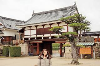 Hirayagura Turret