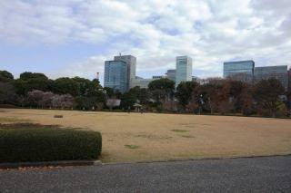Honmaru Oshibafu (Lawn)