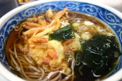 Vegetable Tempura Soba Noodle Soup