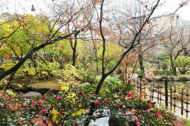 Seifu Pond