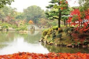 Takuei Pond