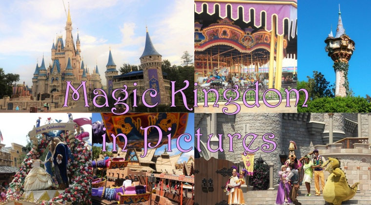 Magic Kingdom in Pictures