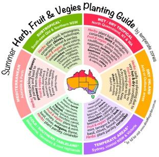 Summer Herb, Fruit & Vegies Planting Guide by temperate zones Au