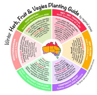 Autumn Herb, Fruit & Vegies Planting Guide by regional zones Aus