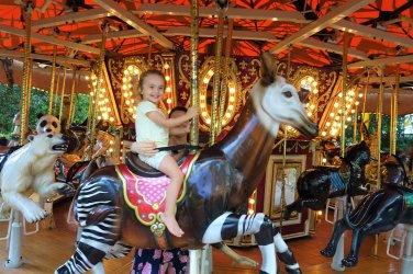 Wild Animal Carousel