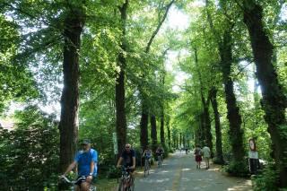 Minnewater Park (Parque Del Amor De Brujas)