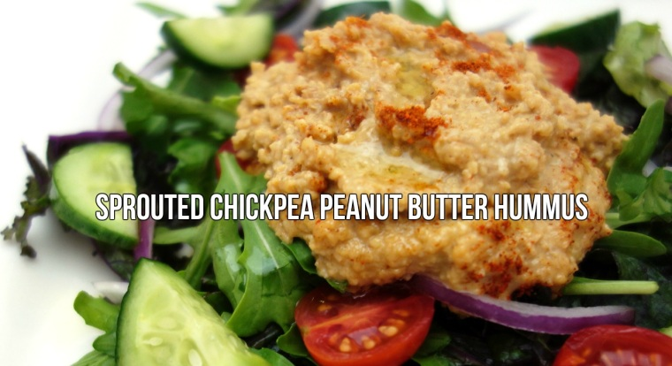 Sprouted Chickpea Peanut Butter Hummus.jpg